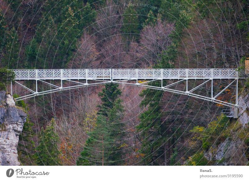 Marienbrücke in Schwangau Ferien & Urlaub & Reisen Tourismus Ausflug Sightseeing Städtereise Berge u. Gebirge wandern Kunstwerk Architektur Landschaft Pflanze