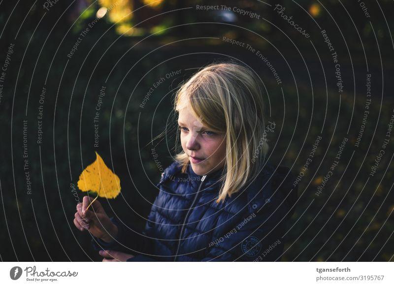 Im Herbst Kind Mensch Natur Pflanze Blatt Freude Mädchen Umwelt natürlich Zufriedenheit träumen blond Lächeln Kindheit Fröhlichkeit