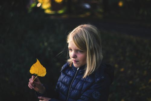 Mädchen mit Herbstlaub in der Hand Kind Kindheit 1 Mensch 8-13 Jahre Natur Pflanze Blatt beobachten Lächeln Blick blond einfach Freundlichkeit Fröhlichkeit