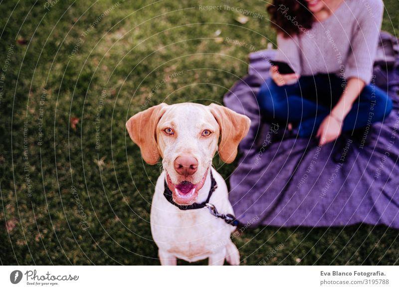 junge Frau mit ihrem Hund im Park. Frau mit Handy. Herbstsaison Porträt Jugendliche Außenaufnahme Liebe Haustier Besitzer Sonnenstrahlen schön Glück Lächeln