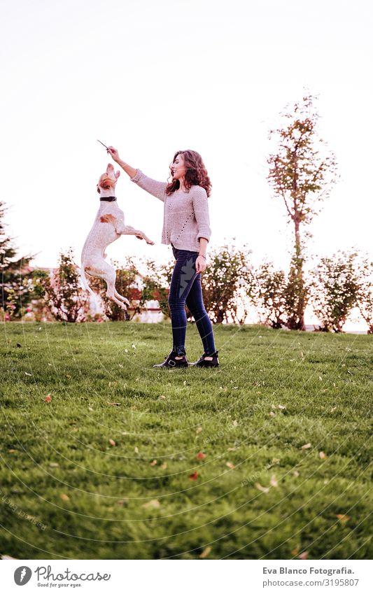 junge Frau spielt mit ihrem Hund im Park. Herbstsaison. Hundespringen Porträt Jugendliche Außenaufnahme Liebe Haustier Besitzer schön Glück Lächeln