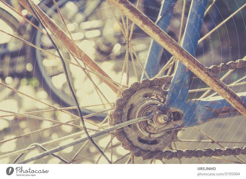 vergessenes Fahrrad Fahrradfahren alt blau braun Fahrradkette Rost rostig abgestellt Farbfoto Gedeckte Farben Außenaufnahme Tag Schatten Sonnenlicht