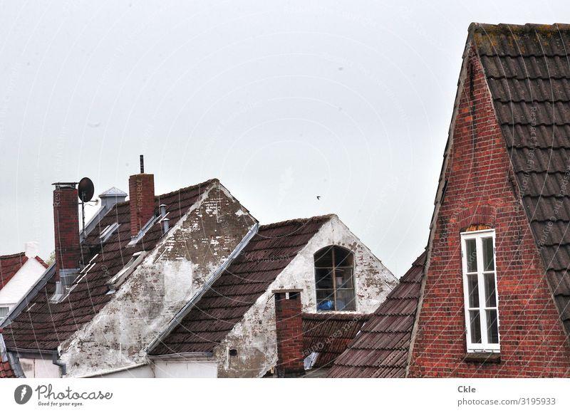 Friesland Handwerk Baustelle Friedrichstadt Schleswig-Holstein Kleinstadt Stadtzentrum Altstadt Haus Einfamilienhaus Mauer Wand Fassade Fenster Dach Schornstein