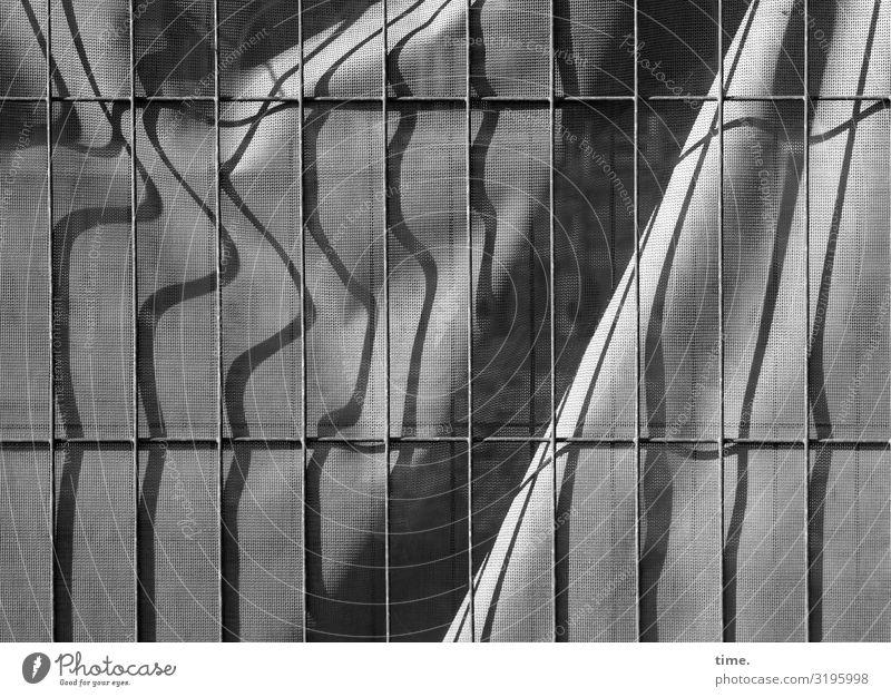 Geschichten vom Zaun (LV) Bauzaun Bauplane Tuch Abdeckung Sichtschutz Metall Kunststoff Linie Streifen Netzwerk Stadt grau Sicherheit Schutz Wachsamkeit