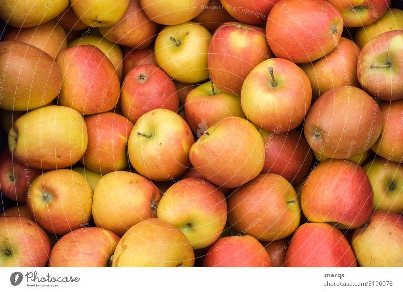 Äpfel Lebensmittel Frucht Apfel Ernährung Bioprodukte Vegetarische Ernährung Wochenmarkt frisch Gesundheit viele lecker Farbfoto Außenaufnahme Nahaufnahme