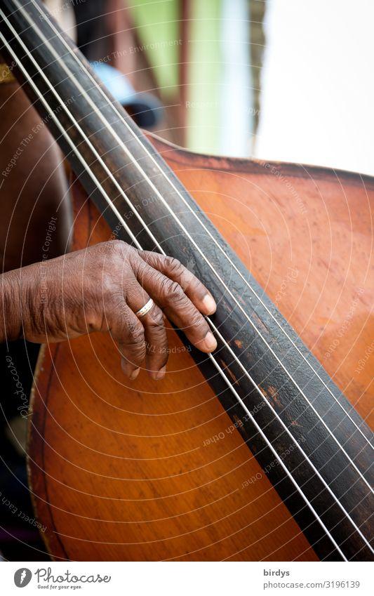 Basszupfer Freude musizieren Musik Musiker maskulin Großvater Senior Leben Hand 1 Mensch 60 und älter Kontrabass Kubaner authentisch Freundlichkeit Glück