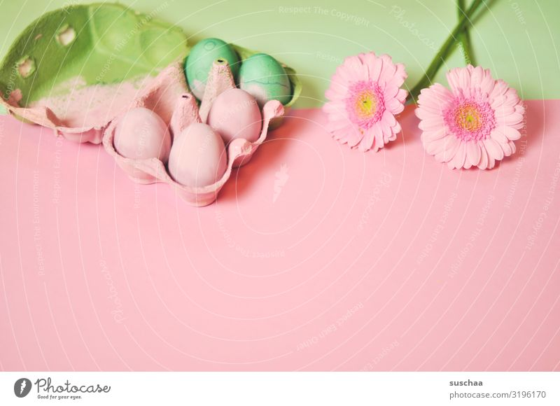 angemalte eier Ostern Osterei Blüte Frühling grün rosa Blume rosa Hintergrund Textfreiraum Dekoration & Verzierung Karte Tradition Ritual Stil Design Postkarte