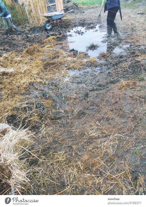 mist und gülle (2) Misthaufen dreckig Übelriechend Kot Gülle Jauche Urin Pull Bauernhof Landwirt Landwirtschaft Forke Gummistiefel Landleben Feldarbeit Geruch