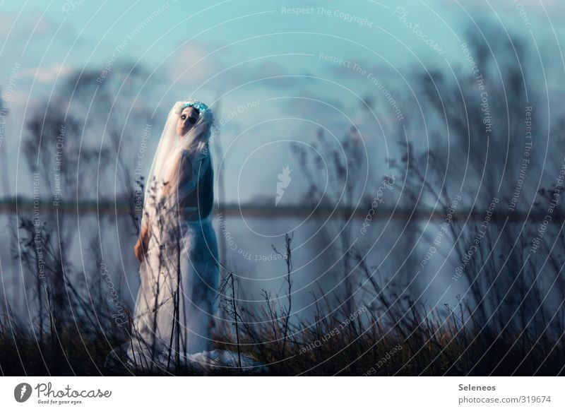 wie eine scheue Braut Mensch Himmel Natur Mann Meer Einsamkeit Landschaft Wolken Winter Erwachsene Umwelt Traurigkeit feminin Herbst Küste Gras
