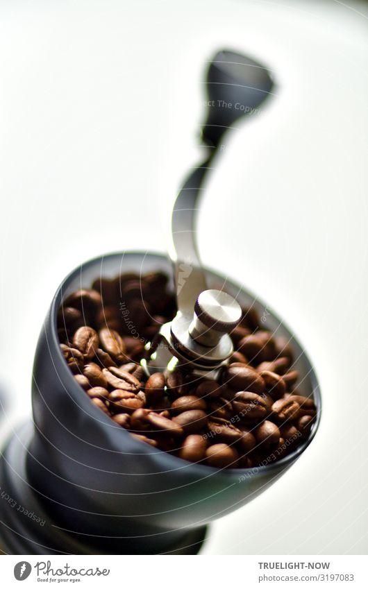 Ich mach dann schon mal Kaffee... Lebensmittel Kaffeebohnen Ernährung Frühstück Kaffeetrinken Bioprodukte Getränk Kaffeemühle Lifestyle Stil Design exotisch