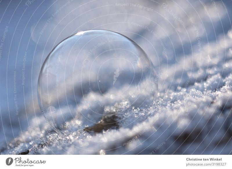 Seifenblase auf Schnee Winter Eis Frost ästhetisch außergewöhnlich glänzend hell schön kalt Kitsch rund blau weiß Freude Fröhlichkeit einzigartig Kreativität