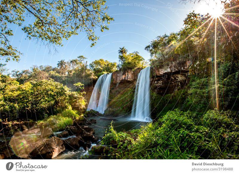 Iguazu: Zwei Schwestern Ferien & Urlaub & Reisen Tourismus Expedition Sommerurlaub Pflanze Wasser Wolkenloser Himmel Frühling Baum Sträucher Moos Urwald Fluss