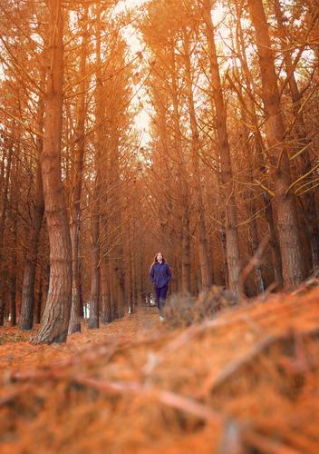 Junge Frau beim Waldspaziergang im Herbst Lifestyle Wellness Meditation Freizeit & Hobby Ferien & Urlaub & Reisen Tourismus Sonne Winter wandern feminin
