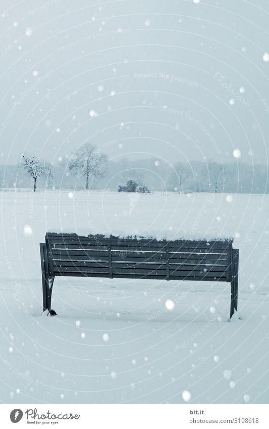 Bank im Schneefall Erholung ruhig Ferien & Urlaub & Reisen Tourismus Ausflug Freiheit Feste & Feiern Weihnachten & Advent Silvester u. Neujahr Trauerfeier