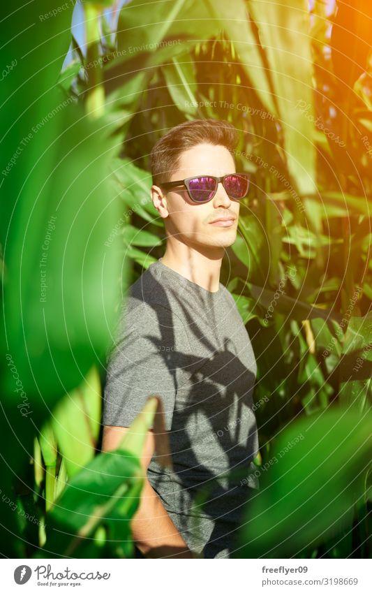 Mensch Natur Jugendliche Mann Himmel (Jenseits) Sommer Pflanze schön grün Junger Mann rot Sonne Blatt Freude 18-30 Jahre Lifestyle