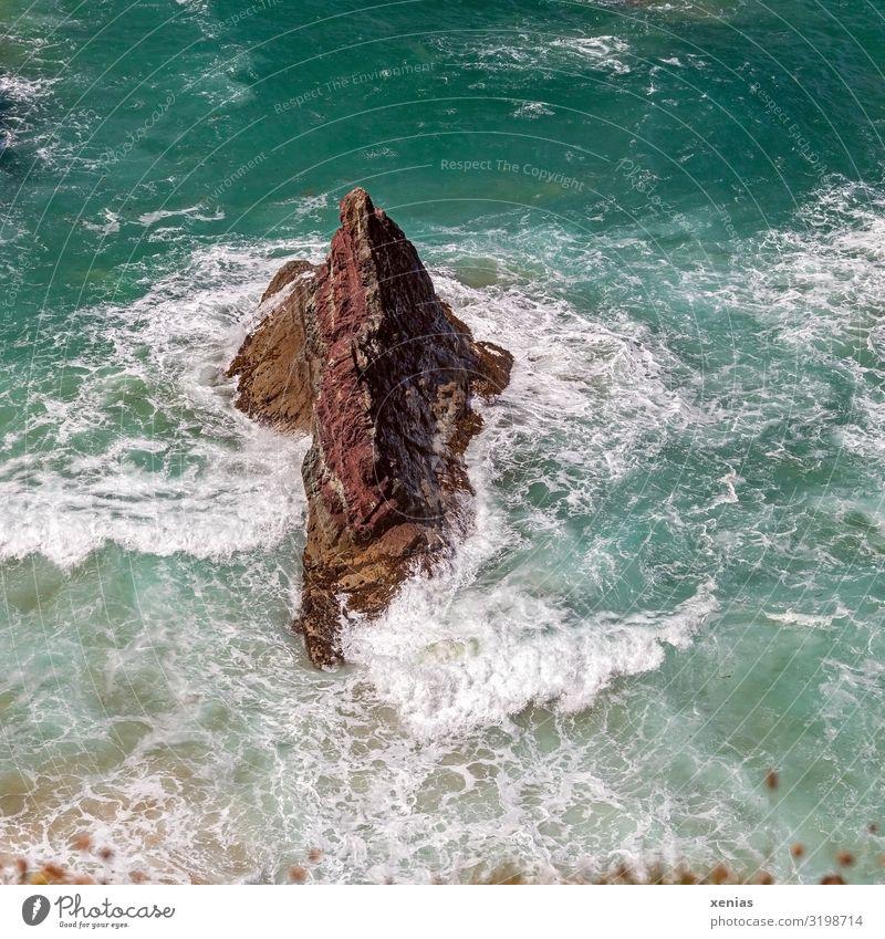 der Fels in den Wellen in der Bucht Butterhole in Cornwall Meer Natur Landschaft Wasser Klima Wetter Schönes Wetter Felsen Küste Brandung England maritim blau