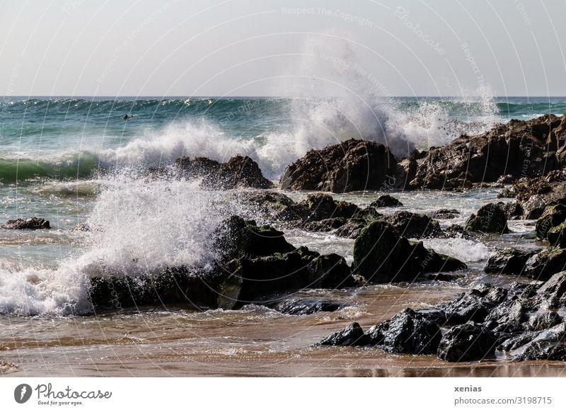 aufpeitschende Wellen am Strand mit Felsen Ferien & Urlaub & Reisen Meer Natur Landschaft Wasser Küste Gischt Trevone Cornwall maritim spritzen Tag