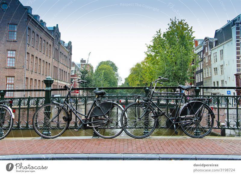 Fahrradpaare über den Kanal von Amsterdam Lifestyle Ferien & Urlaub & Reisen Tourismus Haus Paar Kultur Baum Fluss Stadt Platz Brücke Gebäude Architektur