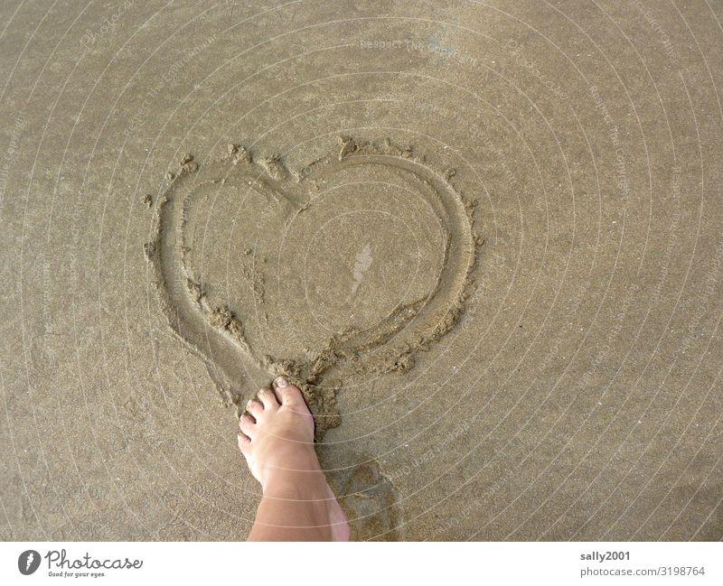 verliebt... Fuß Zehen Strand Zeichen Herz Brunft Liebe träumen Glück Lebensfreude Verliebtheit Romantik Gefühle Kommunizieren Vergänglichkeit Sand Sandstrand