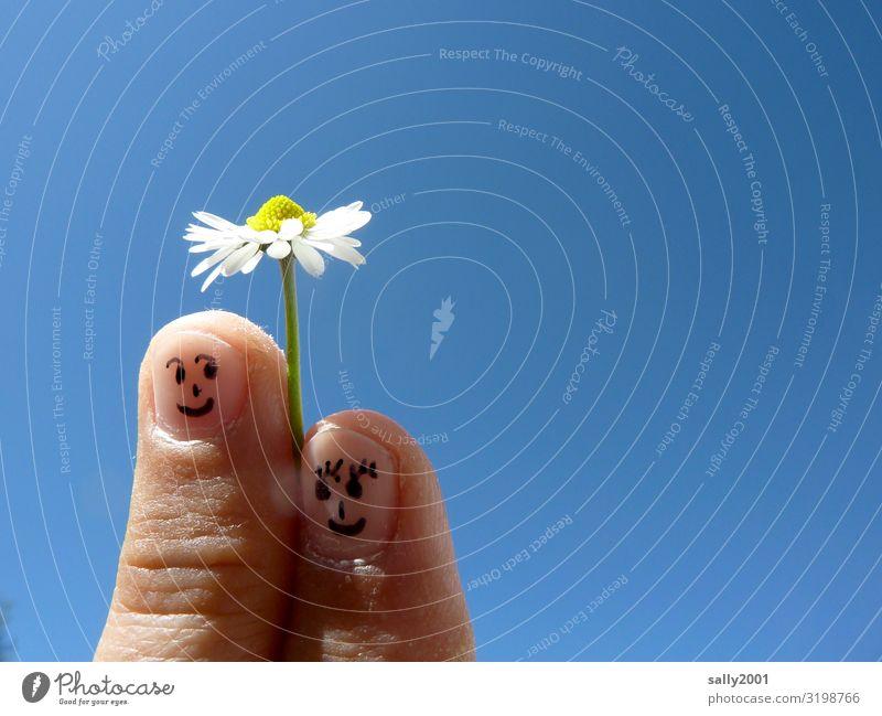 Fingerspitzengefühle... Mensch Paar Partner Gesicht 2 Wolkenloser Himmel Frühling Schönes Wetter Blume Gänseblümchen berühren Blühend festhalten genießen