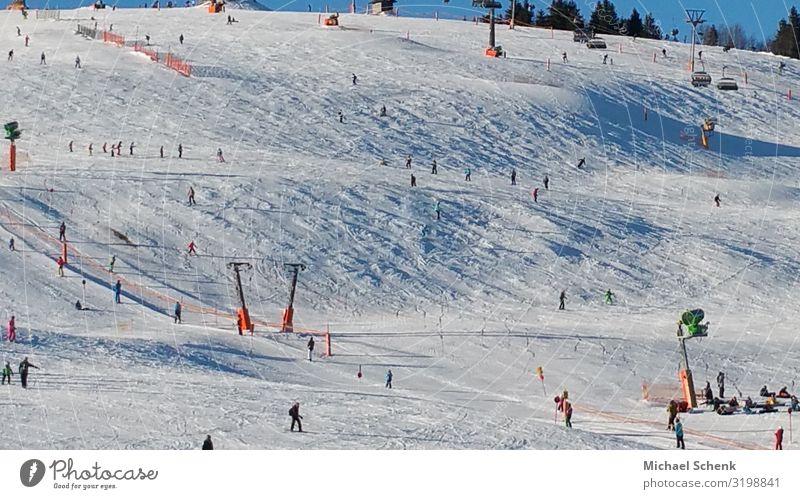 Skipisten auf dem Feldberg Mensch Ferien & Urlaub & Reisen Natur Weihnachten & Advent Freude Winter Berge u. Gebirge feminin Schnee Sport Tourismus Freiheit
