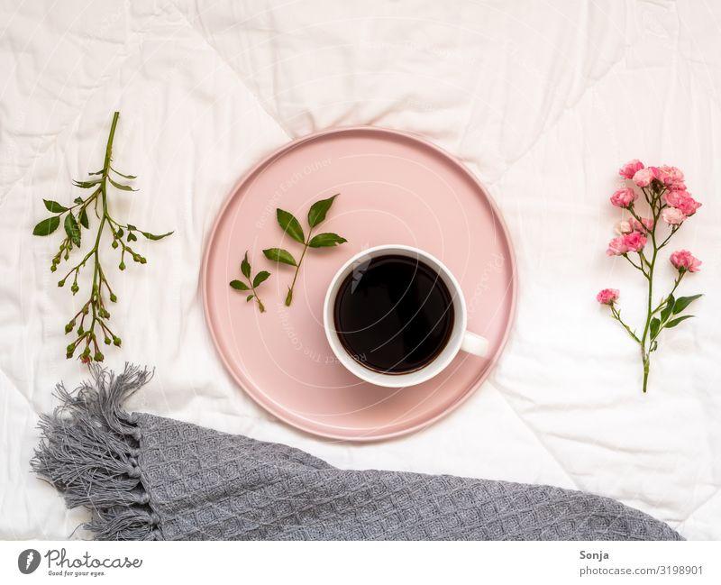Frühstück im Bett mit Kaffee schön Blume Erholung ruhig Gesundheit Lifestyle Wärme Liebe Häusliches Leben Zufriedenheit hell genießen Warmherzigkeit Pause