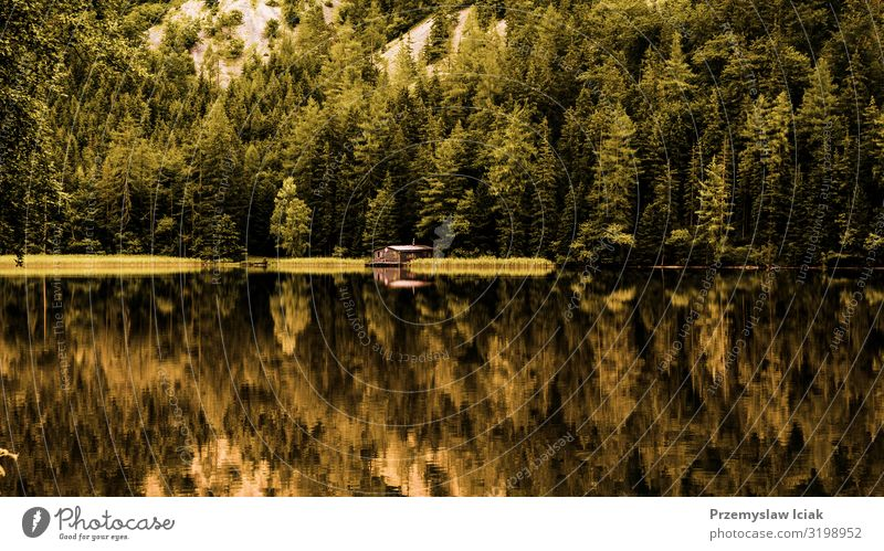 Blick auf ein Holzhäuschen im grünen Kiefernwald am blauen See im ländlichen Sommer Österreichs, Leopoldsteinersee Hintergrund Kabine Küste Cottage Landschaft