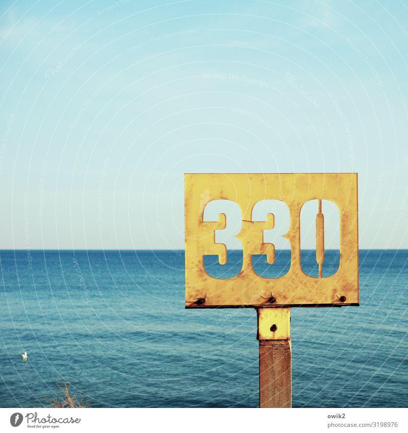 Weites Meer Ferne Wellen Umwelt Natur Landschaft Wasser Wolkenloser Himmel Horizont Schönes Wetter Ostsee Möwe 1 Tier Holz Metall Rost Ziffern & Zahlen
