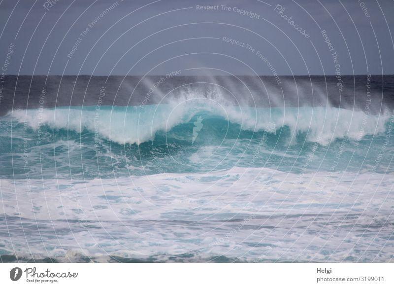 tosendes Meer mit türkisblauem Wasser, Welle und Gischt an der Atlantikküste von Teneriffa Ferien & Urlaub & Reisen Tourismus Insel Wellen Umwelt Natur Bewegung
