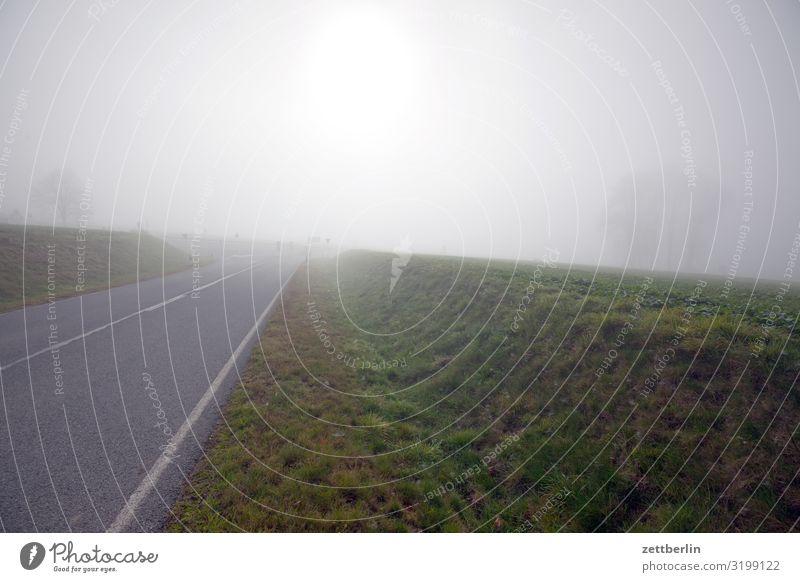 Nebel am Morgen Dunst Herbst Herbstfärbung Herbstprogramm Landschaft Menschenleer Perspektive Ferne Sonne Textfreiraum Wetter Winter Wintermorgen Straße