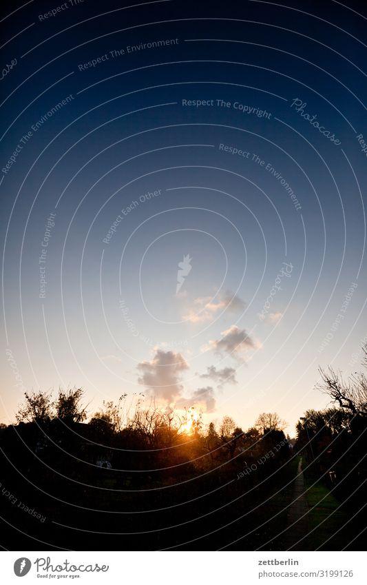 Wolken am Abend mit kleinerer Brennweite Abenddämmerung Ast Baum Dämmerung Erholung Feierabend Ferien & Urlaub & Reisen Garten Herbst Himmel Himmel (Jenseits)