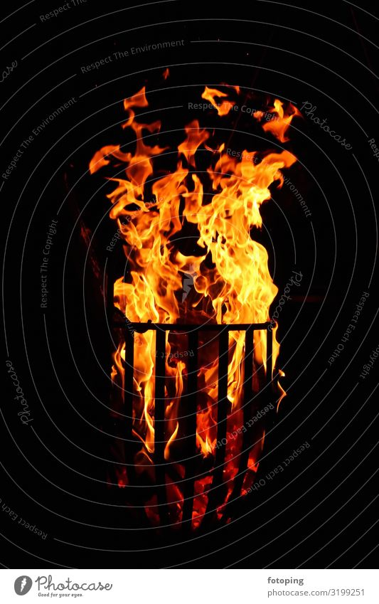 Feuer Wärme Holz heiß Romantik Brennholz Feuerkorb Flamme Glut Hartholz Heizung Rauch Verbrennung anzünden brennen brennendes brennendes Feuer brennendes Holz