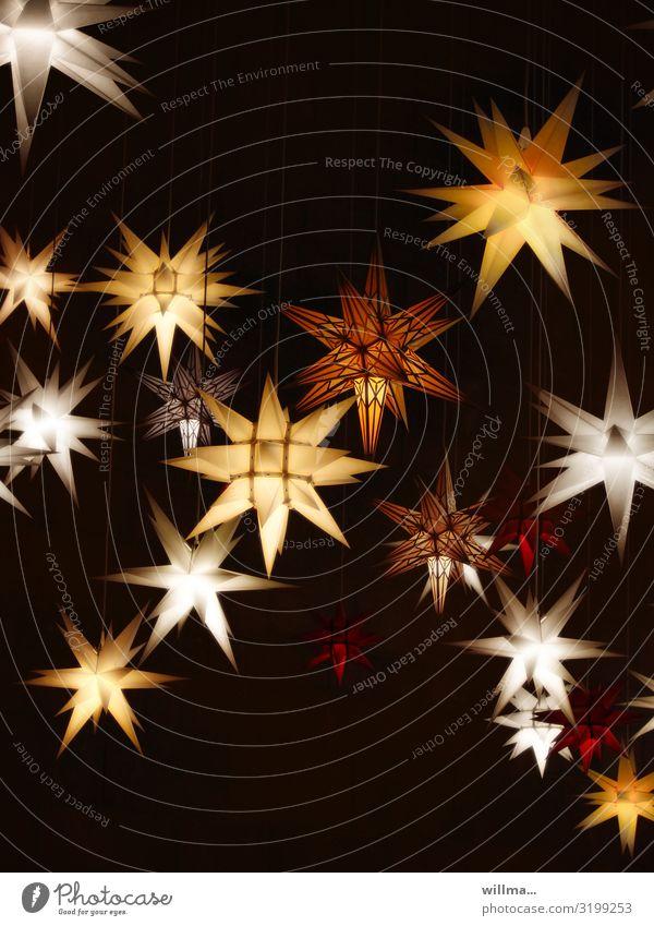 sternstunden Weihnachten & Advent leuchten Stern (Symbol) Weihnachtsdekoration Weihnachtsstern Weihnachtsbeleuchtung