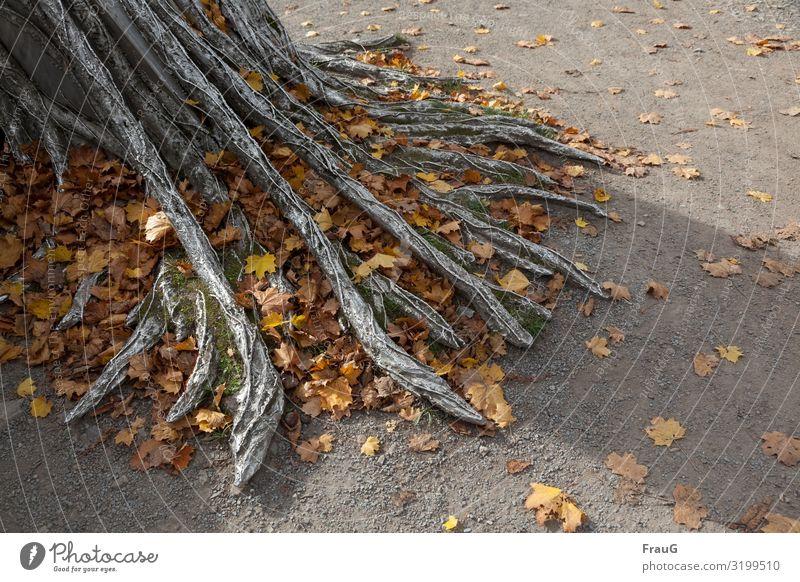 abgestorben | Herbstlaub zwischen versilberten Wurzeln Herbstfärbung herbstlich Ahornblätter Moos Baum Nachbildung Handwerk