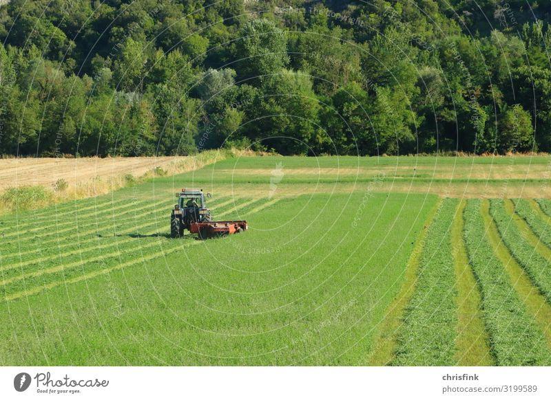 Traktor auf grüner Wiese Arbeit & Erwerbstätigkeit Beruf Landwirt Landwirtschaft Maschine Motor Umwelt Klimawandel Feld Fahrzeug Armut Leben Wachstum pflügen