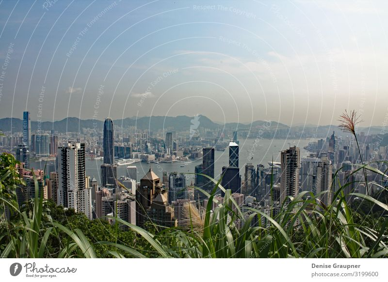 View of Hong Kong from Victoria Peak kaufen Ferien & Urlaub & Reisen Tourismus Sightseeing Büro Business Stadtzentrum Skyline Hochhaus Tower (Luftfahrt)