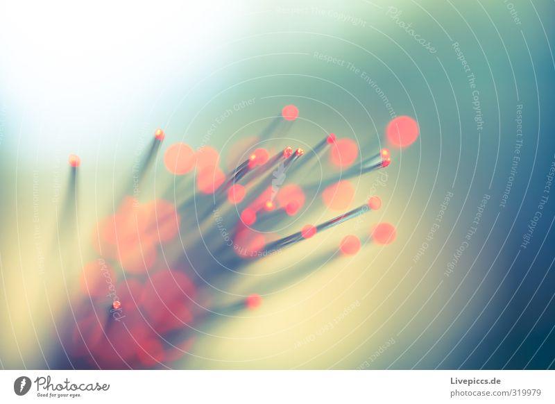 Räuberlicht Freizeit & Hobby Spielen Metall Kunststoff leuchten hell blau gelb grün rosa rot Lichtpunkt Lichtspiel Spielzeug Farbfoto Außenaufnahme Nahaufnahme