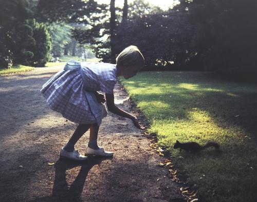 vertrauensbildende Maßnahme Mensch Sommer Baum Mädchen Leben Wege & Pfade feminin Stimmung Park Kommunizieren Wildtier blond stehen Abenteuer Neugier entdecken