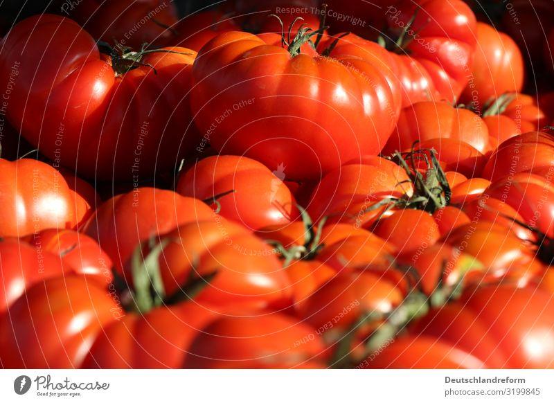 Tomaten Lebensmittel Gemüse Frucht Ernährung Bioprodukte Vegetarische Ernährung frisch Gesundheit glänzend rund saftig Sauberkeit grün rot Diät Vegane Ernährung