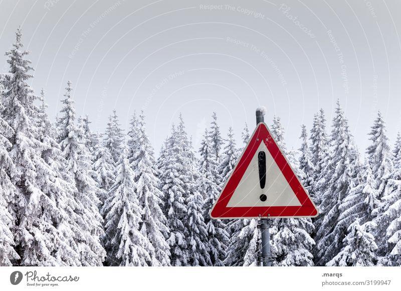 Achtung Winter Natur Landschaft Wald kalt Schnee Schilder & Markierungen Klima Zeichen Sicherheit Baumkrone Vorsicht Nadelbaum Nadelwald Verkehrszeichen