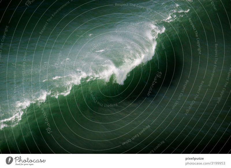 Die Welle Abenteuer Strand Meer Wellen Natur Urelemente Wasser Küste Aggression ästhetisch bedrohlich Portugal Weißwasser Kraft Surfen Wassersport Farbfoto