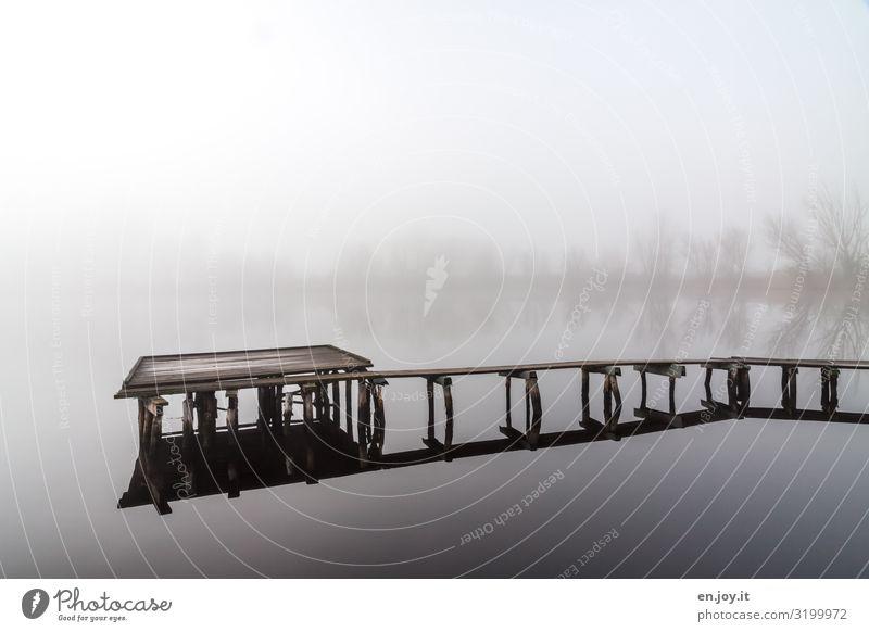 Laufsteg Ferien & Urlaub & Reisen Ausflug Natur Landschaft Herbst Winter Nebel See Steg Pfosten Einsamkeit Erholung kalt ruhig Tod Trauer Traurigkeit Farbfoto