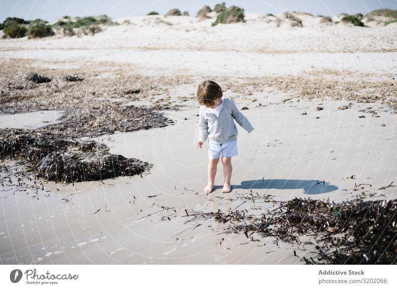 Barfüßiges Kind in kurzen Wellen am Sandstrand klein winken Strand Barfuß Säuglingsalter niedlich Freude erkundend schön heiter Kindheit Fundstück hübsch