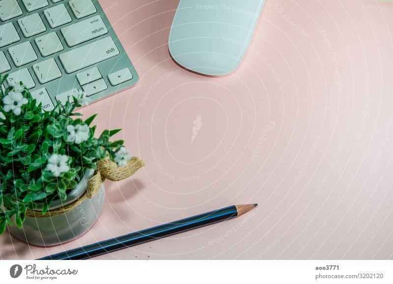 Draufsicht Keyboard-Computer Design Schreibtisch Tisch Arbeit & Erwerbstätigkeit Arbeitsplatz Büro Business feminin Blume Papier modern rosa Idee Kreativität