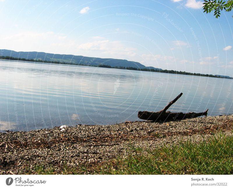 Sommeridylle Wasser Sonne Strand See Wärme Küste Physik