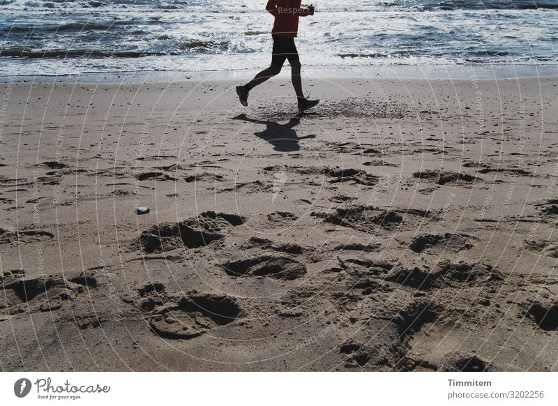 Schnell! Das Jahr geht zu Ende! Gesundheit Ferien & Urlaub & Reisen Fitness Sport-Training Joggen Laufsport Mensch Mann Erwachsene 1 Umwelt Natur Urelemente