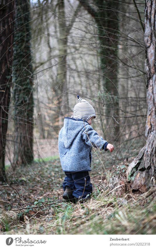 Junge im Wald Kind Mensch blau Baum klein Spielen braun grau Ausflug Kindheit entdecken Schutz Hose Mütze