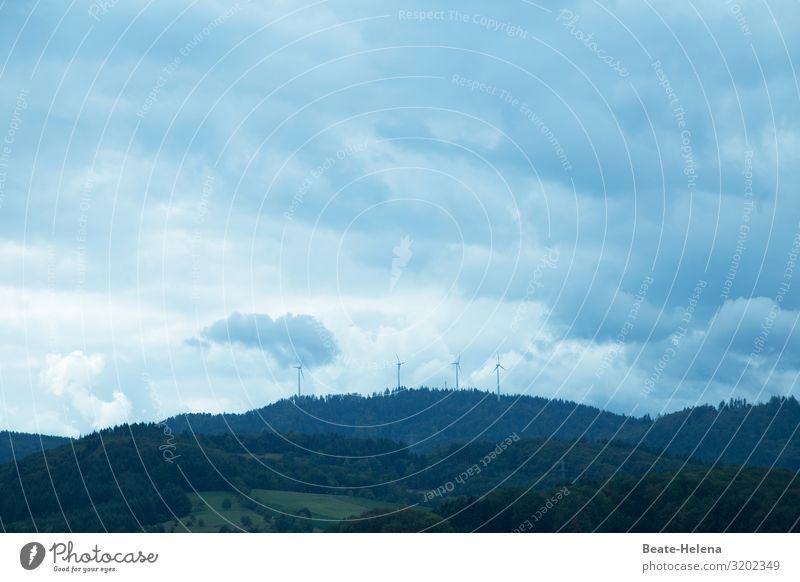 Himmlisch Himmel Natur blau grün Landschaft Sonne Wolken Wald Arbeit & Erwerbstätigkeit hell Wetter Kraft authentisch Wind Zukunft beobachten