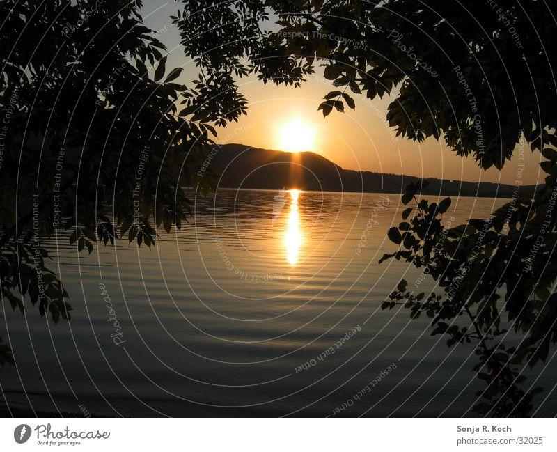 Sonnenuntergang Wasser Sonne ruhig Idylle Abenddämmerung