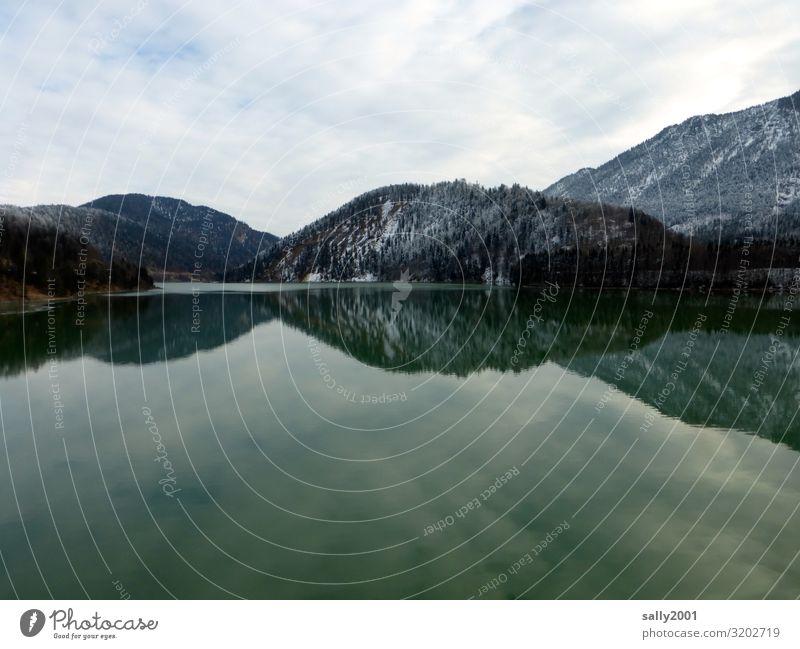 still ruht der Sylvensteinspeicher... Stausee Isar Isarwinkel See Winter Berge Alpen Voralpenland Wasserreservoir kalt grau Spiegelung Reflexion & Spiegelung
